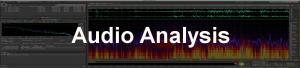 IRIS-IDFL Audio Analysis